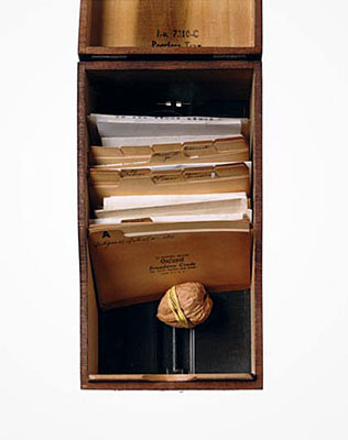 4-walnut-box.jpg